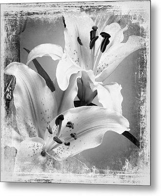 Black And White Grunge Lilies Metal Print