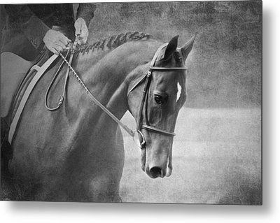 Black And White Horse Photography - Softly Metal Print