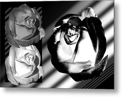 Black And White Roses Metal Print