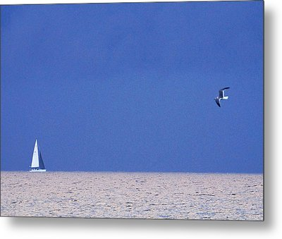 Black And White Sailboat And Seagull Metal Print