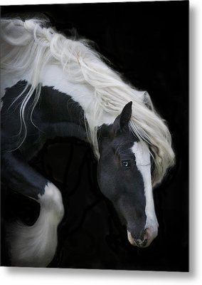 Black And White Study V Metal Print by Terry Kirkland Cook
