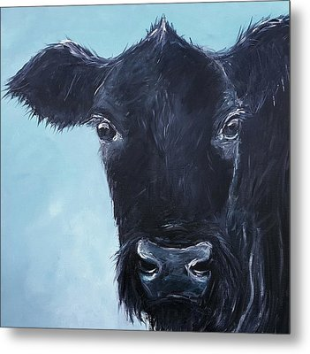 Black Angus Aggie Metal Print by Karen King