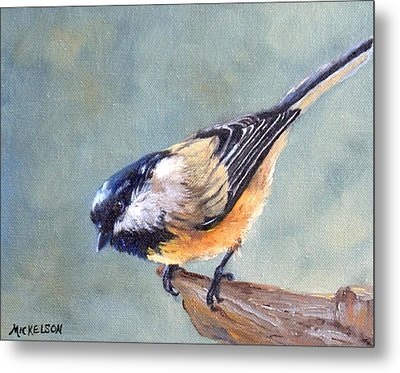 Black Capped Chickadee Metal Print by Debra Mickelson