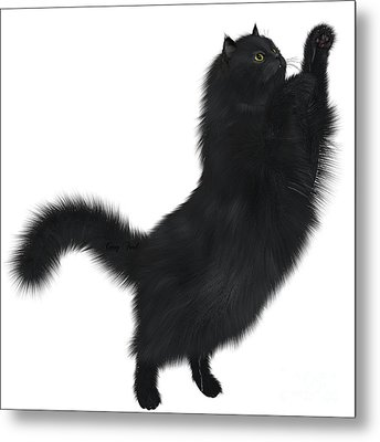 Black Cat Metal Print by Corey Ford