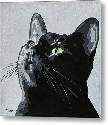 Black Cat Metal Print by Slade Roberts