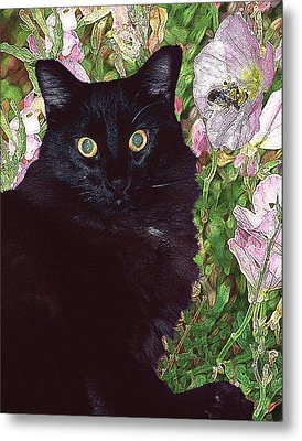 Black Cat Startled By A Bee Metal Print