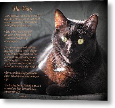 Black Cat The Way Metal Print