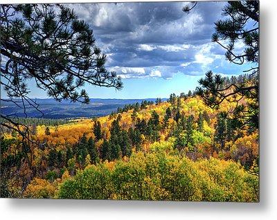 Black Hills Autumn Metal Print