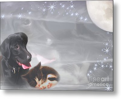 Black Lab And Kitten Collage Metal Print by Judy Brand
