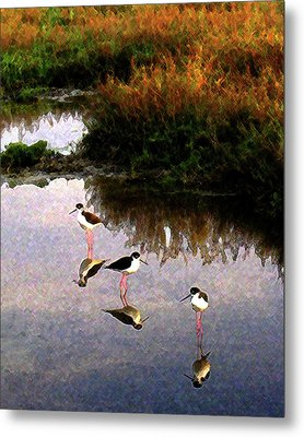 Metal Print featuring the digital art Black-necked Stilts by Timothy Bulone