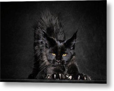 Black Panther Metal Print by Robert Sijka