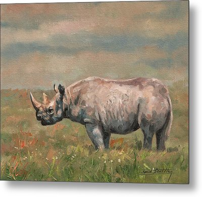 Black Rhino Metal Print by David Stribbling