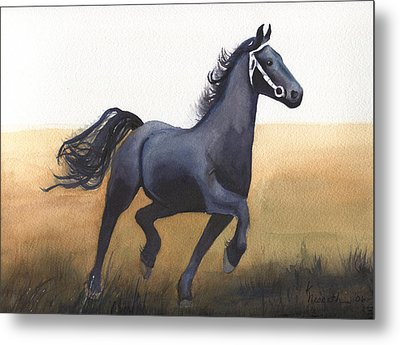 Black Stallion Metal Print by Kathy Nesseth