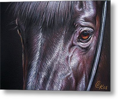 Black Stallion Metal Print