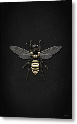 Black Wasp With Gold Accents On Black  Metal Print
