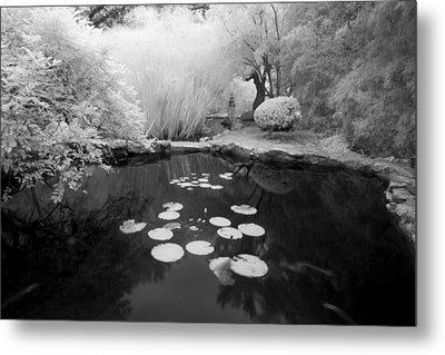 Black Water Pond Metal Print by John Gusky