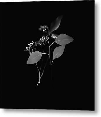 Floating Black And White Metal Print
