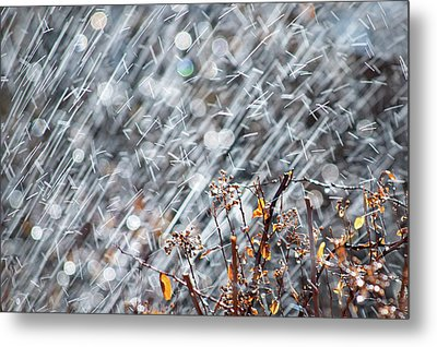 Blame It On The Rain Metal Print