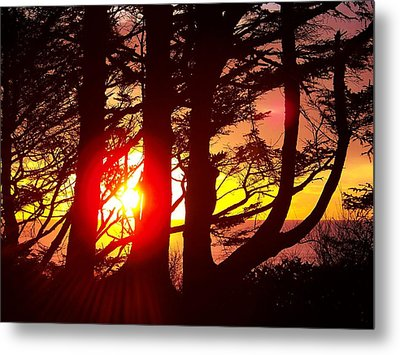 Blazing Sunset Metal Print by Angi Parks