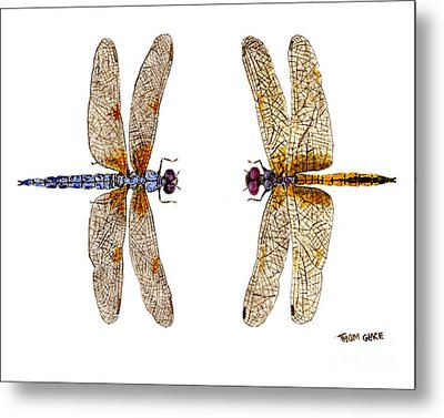 Bleached Skimmer And Hyacinth Glider Metal Print by Thom Glace