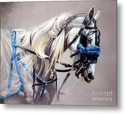 Blizzard Babe Metal Print by Carrie L Lewis