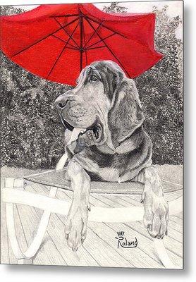 Bloodhound Under Umbrella Metal Print by Tracy Dupuis Roland