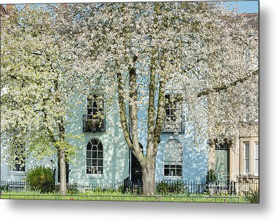 Metal Print featuring the photograph Blooming Oxford by Tim Gainey