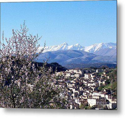 Blossoms With A View Metal Print by Judy Kirouac
