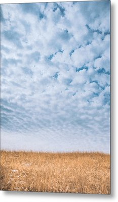 Blue And Amber Metal Print by Scott Norris