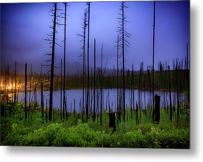 Metal Print featuring the photograph Blue And Green by Cat Connor