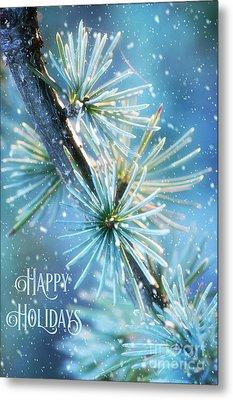 Blue Atlas Cedar Winter Holiday Card Metal Print