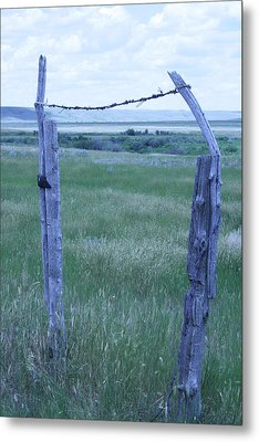 Blue Barbwire Metal Print