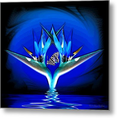 Metal Print featuring the photograph Blue Bird Of Paradise by Joyce Dickens