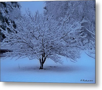 Blue Christmas Metal Print by Betty Northcutt