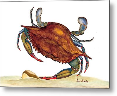 Metal Print featuring the painting Blue Crab by Anne Beverley-Stamps