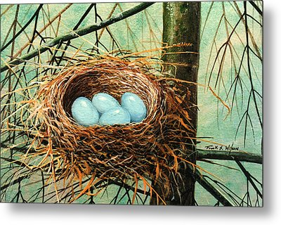 Blue Eggs In Nest Metal Print