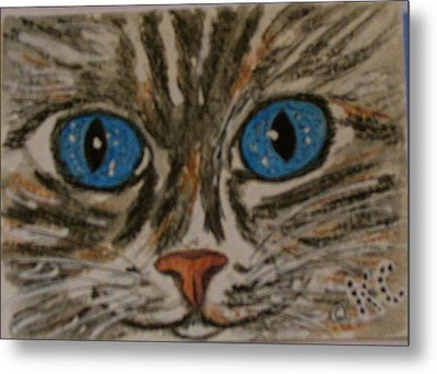 Blue Eyed Tiger Cat Metal Print