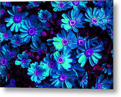 Blue Flower Arrangement Metal Print by Phill Petrovic