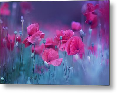 Blue Garden Poppies Metal Print by Magda  Bognar