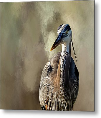 Blue Heron Metal Print by Cyndy Doty