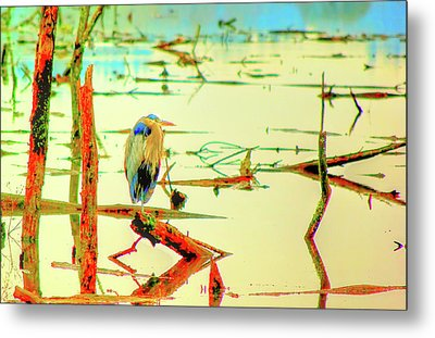 Metal Print featuring the photograph Blue Heron by Dale Stillman