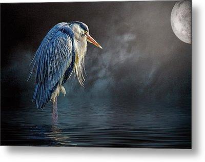 Blue Heron Moon Metal Print by Brian Tarr