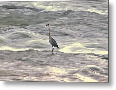 Blue Heron On The Grand River Metal Print