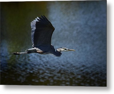Blue Heron Skies  Metal Print by Saija  Lehtonen