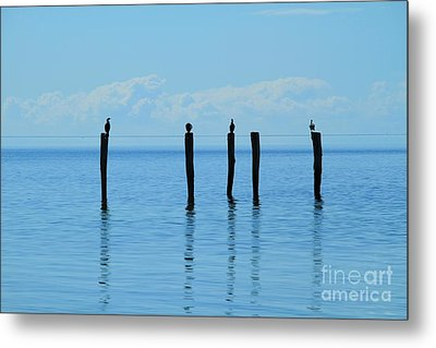 Metal Print featuring the photograph Blue Horizon by Stephen Mitchell