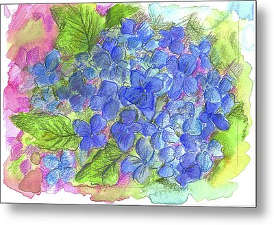 Metal Print featuring the painting Blue Hydrangea by Cathie Richardson