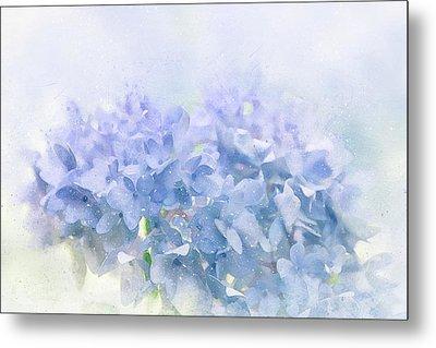 Blue Hydrangea Light Metal Print