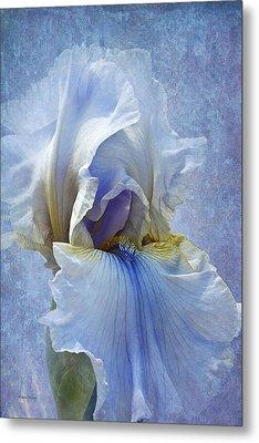 Blue Iris Fog Metal Print by Phyllis Denton