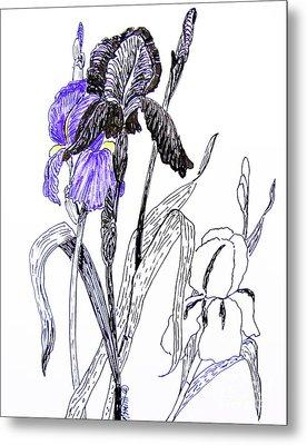 Blue Iris Metal Print by Marilyn Smith