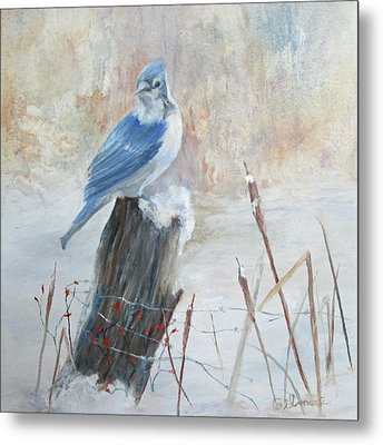 Blue Jay In Winter Metal Print by Roseann Gilmore
